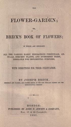 Download The flower-garden