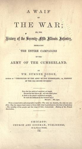 A waif of the war by William Sumner Dodge
